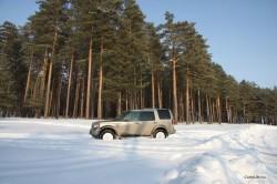 LandRover в лесу