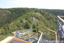 лестница на горе стрельная